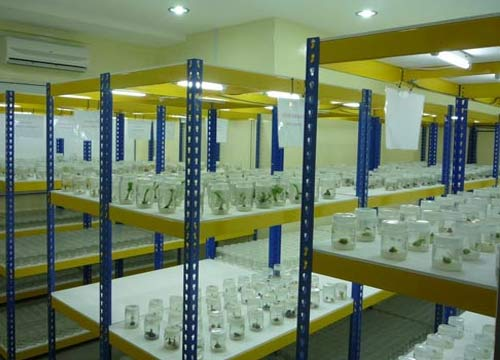Furniture Laboratorium Globalindo Teknik Mandiri