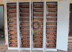 lemari penyimpanan spesimen serangga