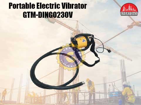 portable electric vibrator